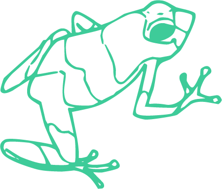 Icone Frog